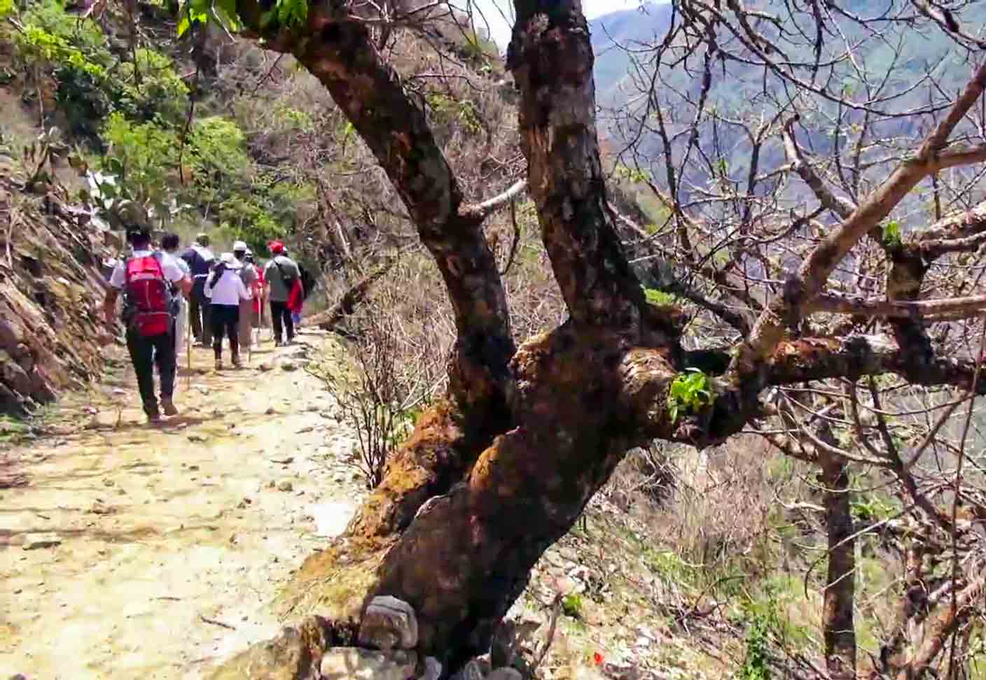 road to choquequirao